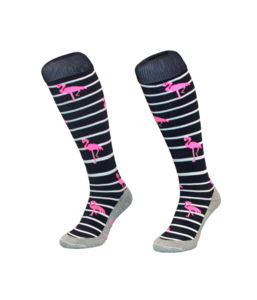 Hingly Socks Stripe Flamingo
